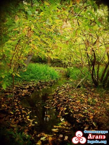 Осень - красивая пора
