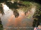 Отражение Неба