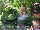 Добрый урожай